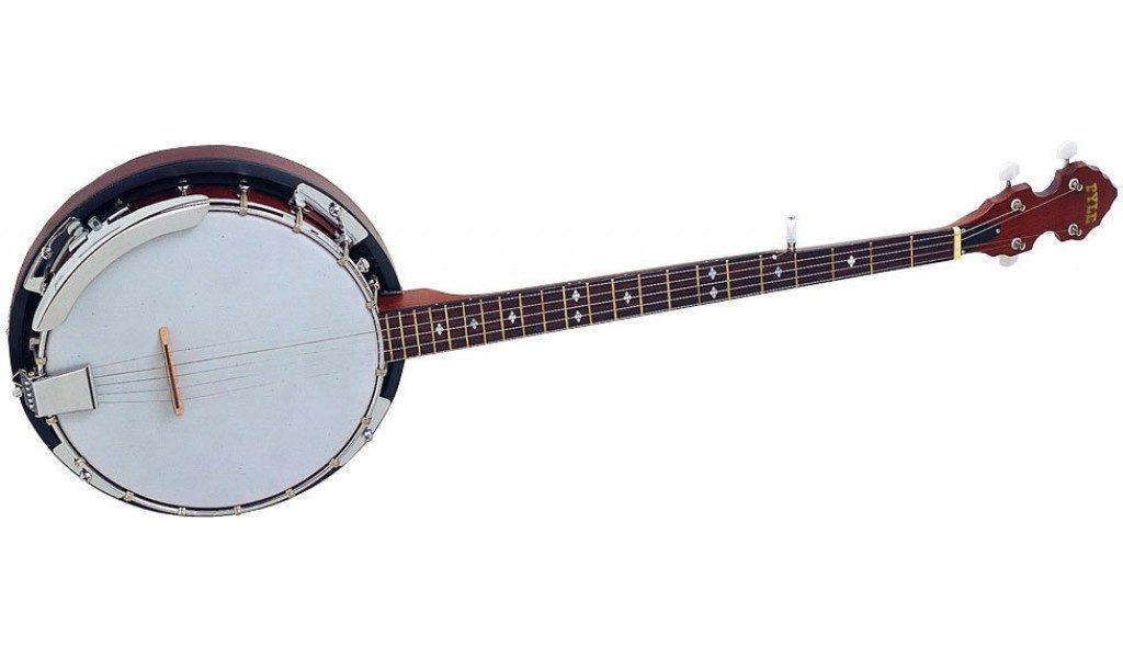 Best banjo for beginners