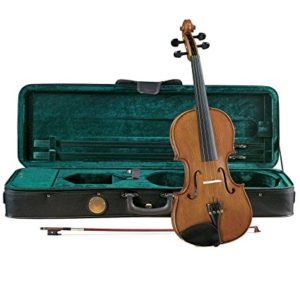 Best student fiddles