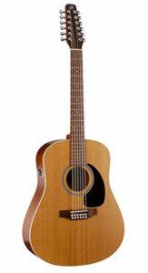 Cheap 12 String Guitar