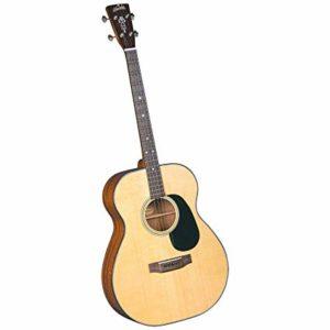 Top Tenor Guitars