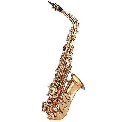 Top Alto Saxophones For Beginners