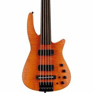 Best Fretless Bass Guitars For Professionals