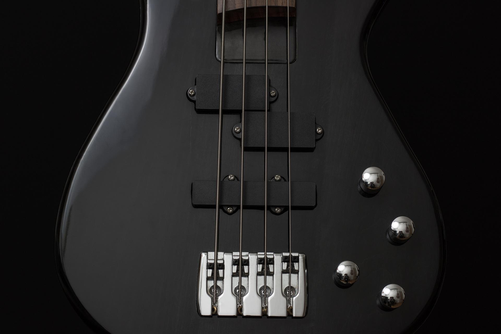 Best Fretless Bass Guitars