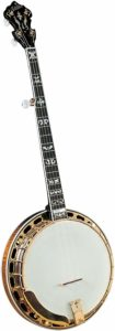 Best Banjo For Advanced Players
