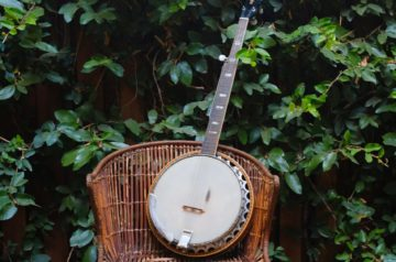 Best Professional Banjos