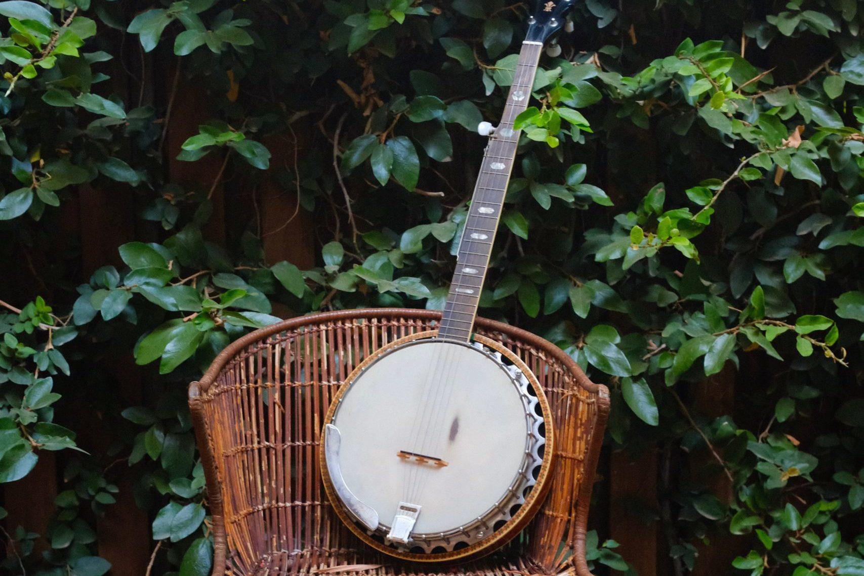 Best Professional Banjos