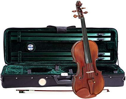 Expensive Violin