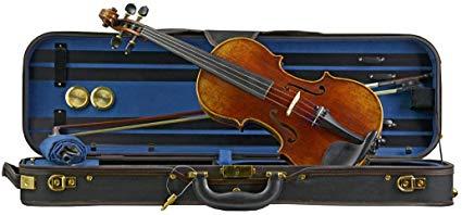 Best Professional Violins