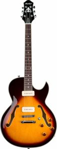 Best Semi-Hollow Body Electric Guitars