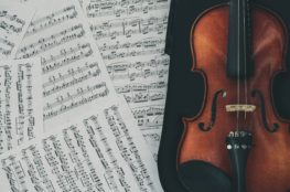 Best Violin Books For Beginners